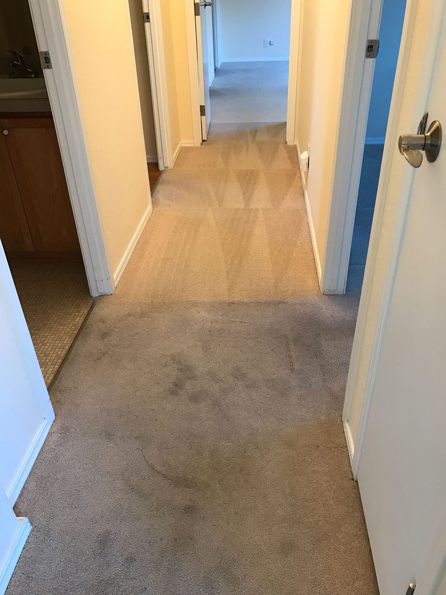 Dons Carpet Cleaning Gig Harbor