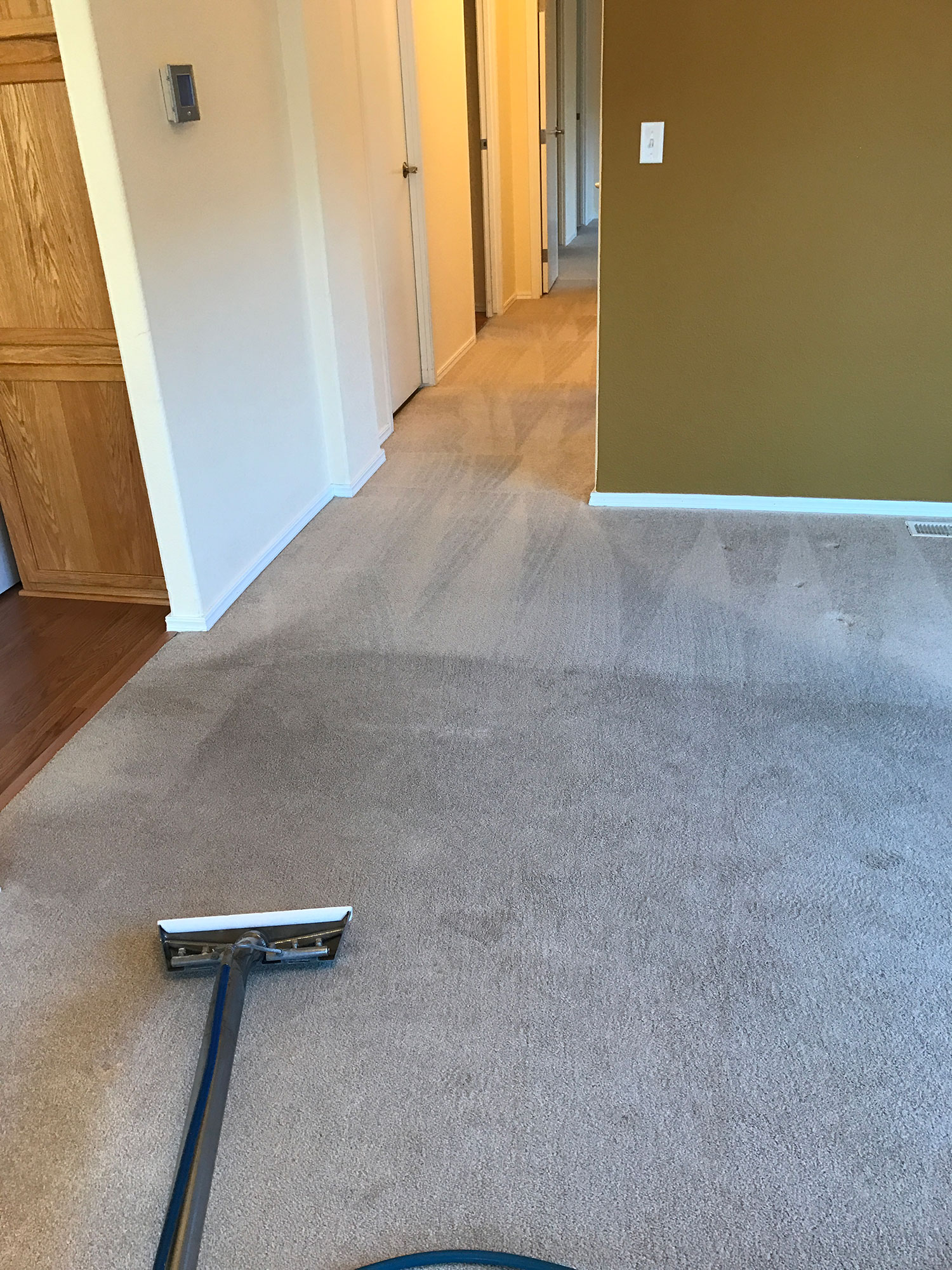 Dons Carpet Cleaning Kitsap Peninsula